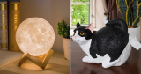 """30 Quirky Things On Amazon That Will Make You Say """"I Need This!"""""""